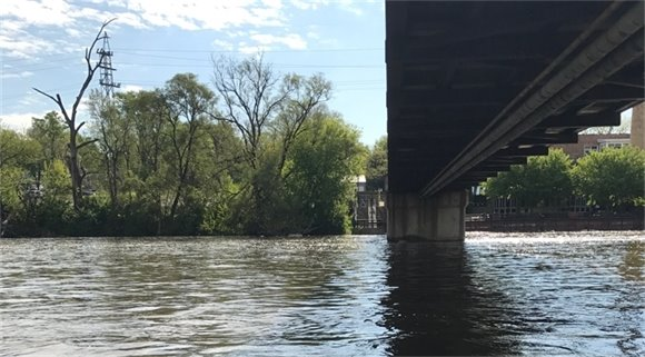 Fox River Cleanup May 20 2017