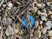 Plastic debris along the Fox