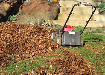 Mulching leaves with a mower