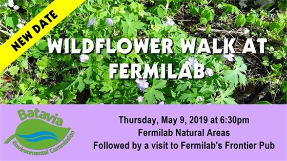 Wildflower Walk at Fermilab Thursday, May 9 at 6:30 pm