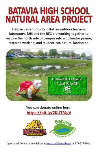 BHS natural area project